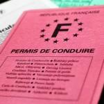 304-alerte-aux-points-CE-PREMIUM-stage-permis